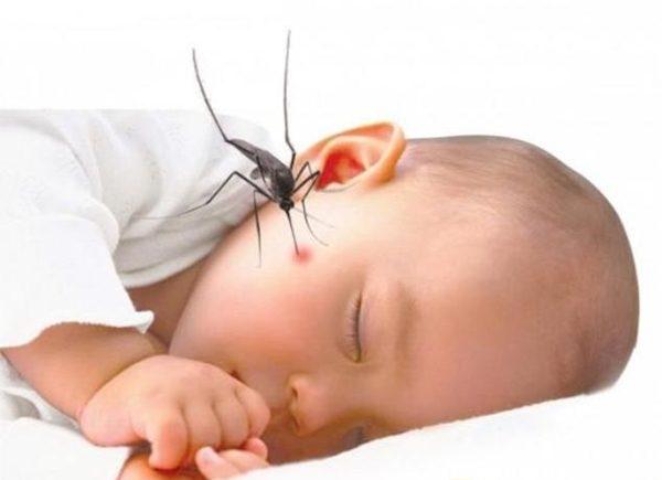 Dịch sốt xuất huyết Dengue bùng phát chưa từng có trong lịch sử 1