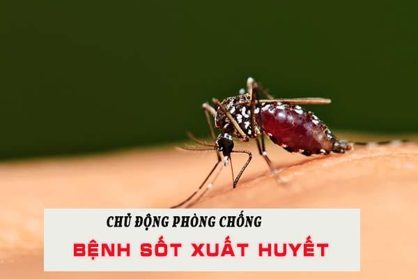 Phòng chống bệnh sốt xuất huyết hiệu quả 1