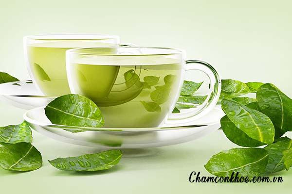 Dùng lá trà xanh 1