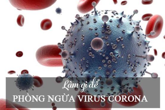 Biện pháp phòng lây nhiễm virus Corona